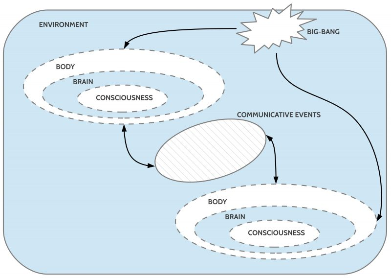 General setting of the homo sapiens species (simplified)